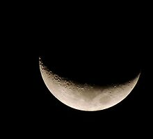 Moon Phase 18th Dec 2012 by Lynette Higgs