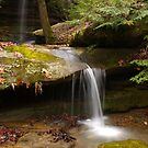 Wrigley Falls Stream by Kent Nickell