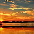 Psalm 19:1 The heavens declare the glory of God; the skies proclaim the work of his hands.  by Penny Rinker