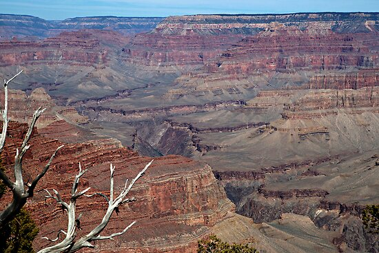 Grand Canyon Gorges by Michael Kirsh