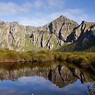 Reeds Peak reflected in a small tarn by michaelc361