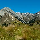 Craigieburn Range #2 by johngs