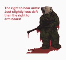 The right to arm bears by David Roe