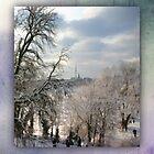 frozen Alster 01 by Karen  Securius