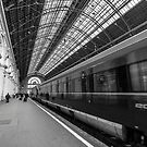 Budapest Keleti Railway Station by Antti Yrjnen