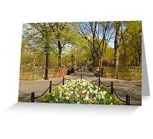 Washington Square Greeting Card