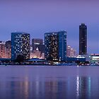 San Diego, CA Skyline at night by camfischer