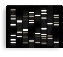 DNA Art White on Black Canvas Print