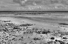 Yamacraw Beach in Nassau, The Bahamas (Black & White) by 242Digital