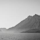 Rocky coast by David Isaacson
