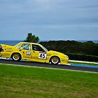 Adrian Allisey, ex-Smerdon/Hinton/Turpin 719 Holden Commodore VL by Steven Weeks