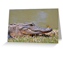 The Lazy Gator & The Dragonfly Greeting Card