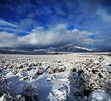 High Desert Snows by SB  Sullivan
