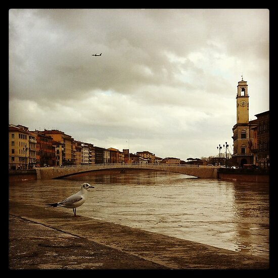 Close encounters walking in Pisa in a cloudy day by peestols