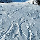First ski tracks at Snobasin, Utah by Anton Oparin
