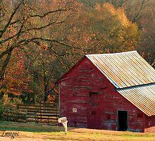 Berryvine Barn Fall by BerryvineImage
