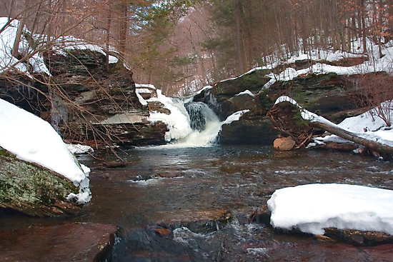 Winter's Retreat at Murray Reynolds Falls by Gene Walls