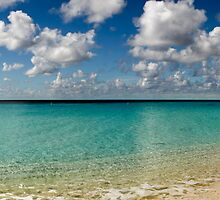 Caribbean pastoral seashore panorama  by PhotoStock-Isra
