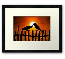 Birds Love Framed Print