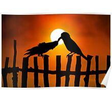 Birds Love Poster