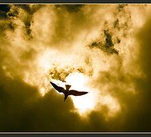 Golden Flight 2012 by CrismanArt