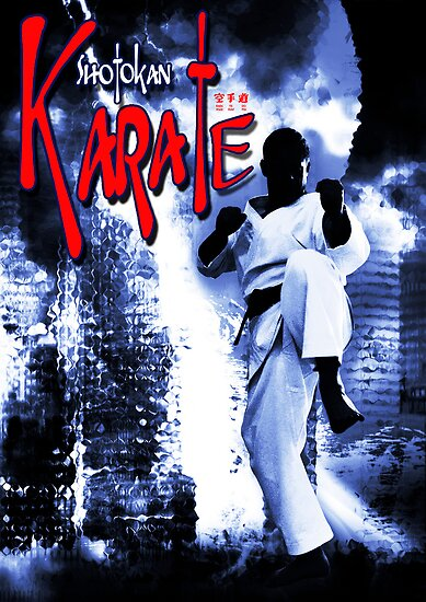Shotokan Karate  by mbricknell