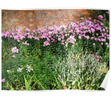 Corner of a cottage garden Poster