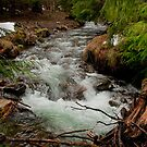 Small Creek by Lee LaFontaine