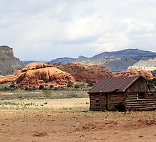 Old Cabin in Kodachrome State Park,Utah,USA by Anthony & Nancy  Leake
