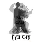 500+ viewsKeep Calm and Do Some TAI CHI IV by Shaojie Wang