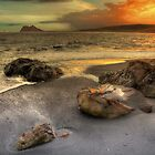 Little Rock Big Rock by manateevoyager