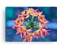 Floral Crown Canvas Print