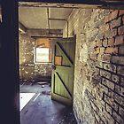 Green Door by birdinanaviary