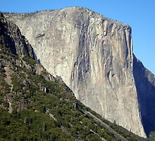 Sheer Rock Face of El Capitan  by Steve Upton