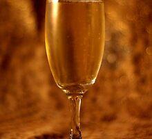 Still Life - Champagne & Gold by rsangsterkelly