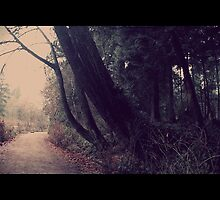 November Day by RobertCharles