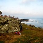 New Hampshire Atlantic Coast  by LaurelMuldowney