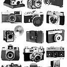 Fifteen Classic Cameras by Maxim Grew