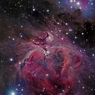 M42 and the Running Man Nebula by astrochuck