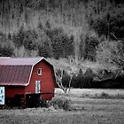 *Barn Art* by DeeZ (D L Honeycutt)