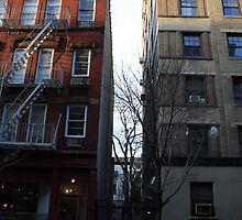Hidden New York (2) by Amanda Vontobel Photography