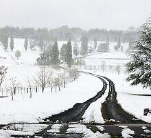 Glenn Innes Snow by Terry West