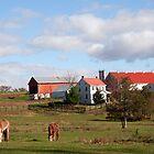 Lancaster County Farm by Delmas Lehman