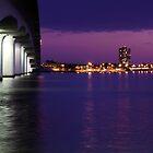 Sarasota Bay Florida by Delmas Lehman