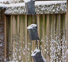 Snowy Fence by Jordan Selha
