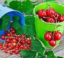 Cherries and currants by Joana Kruse