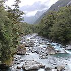 Fiordland National Park, New Zealand by elm321