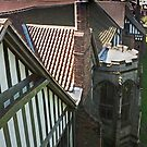 Gainsborough Old Hall- On the tower by jasminewang