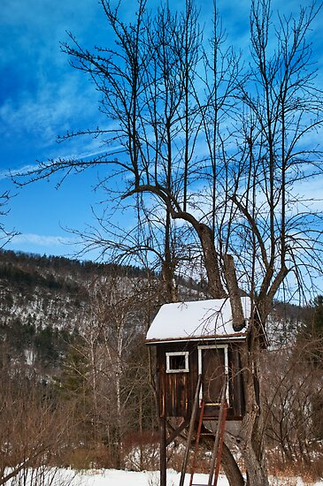 The tree house by Penny Rinker