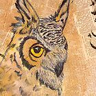 Owl by chelleill